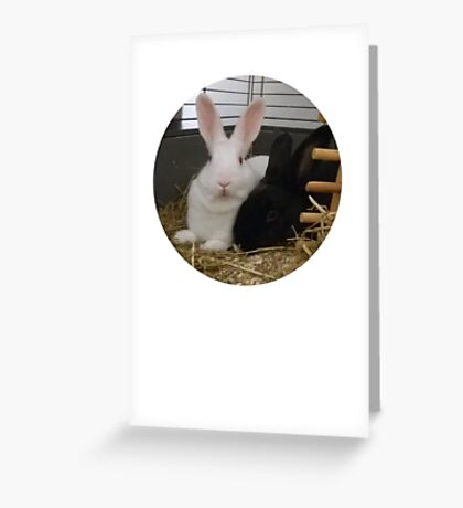 Getting Cosy Greeting Card