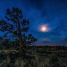 Van Goghish Moon/Redmond by Richard Bozarth