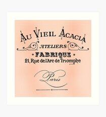 Vintage Antique Shop Sign Parisian Art Print