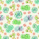 Succulents by Tangerine-Tane