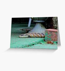 Blue-tongue lizard Greeting Card