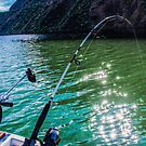 Going for the Big Ones./Deschutes River by Richard Bozarth
