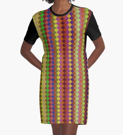 Retro Stripes by Julie Everhart Graphic T-Shirt Dress