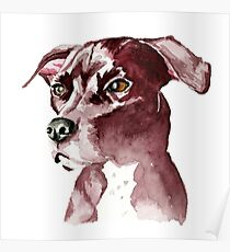 Monochromatic Pit Bull Dog Watercolor Painting Poster