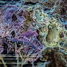 Planet X/Redmond by Richard Bozarth