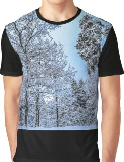Winterland Graphic T-Shirt