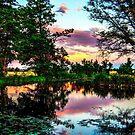 Pond of Clouds/Redmond by Richard Bozarth