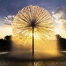 Gus Wortham Memorial Fountain Houston by josephhaubert