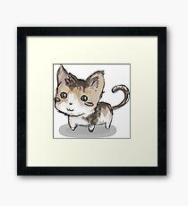 Cat squeegie Framed Print