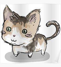 Cat squeegie Poster