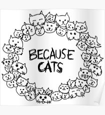 Because cats Poster