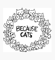 Because cats Photographic Print