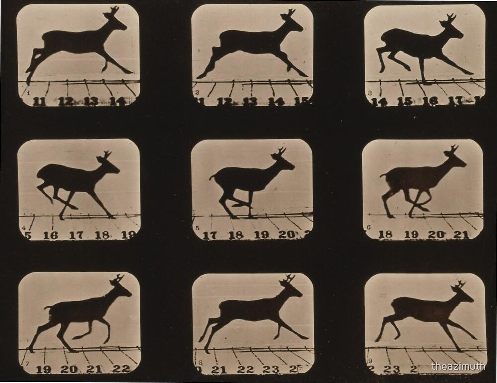 Deer - Running in Frames\