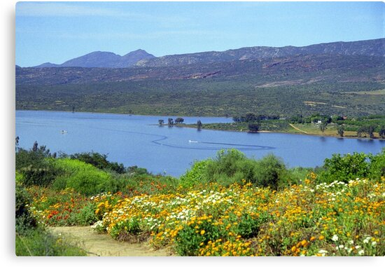 Clanwilliam Dam, Western Cape, South Africa by Bev Pascoe