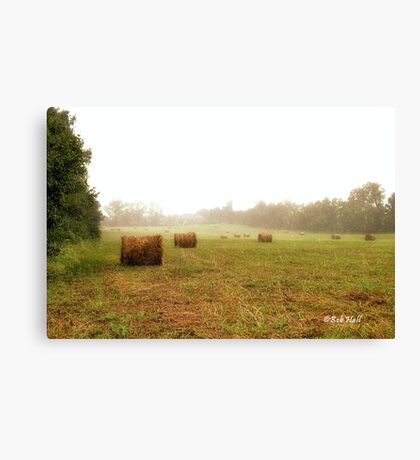 """Bales: Here, and There""... prints and products Canvas Print"