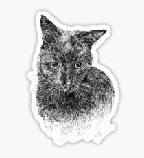 Black Cat Pen and Ink Drawing Sticker