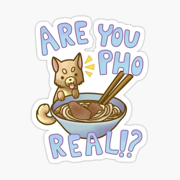 Are You Pho Real!? Sticker