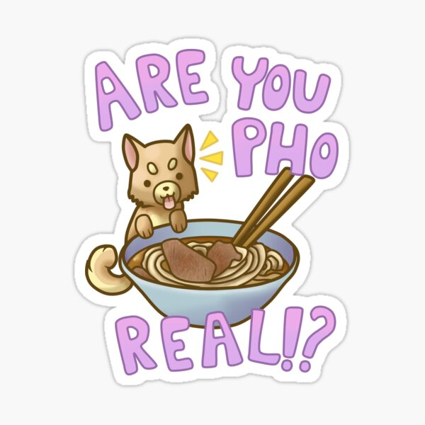 Are You Pho Real!? (Pink) Sticker