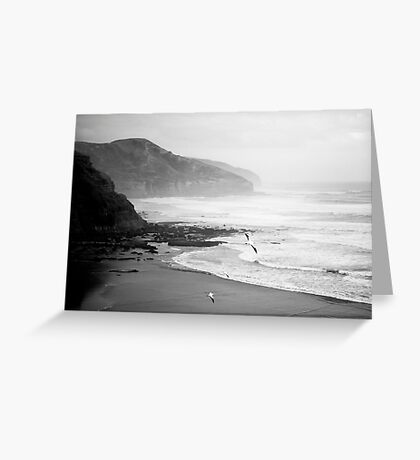 Gannets on Muriwai Beach. Greeting Card