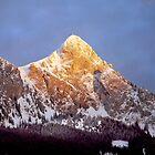 Last sunlight on the mountain by Arie Koene