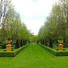 Galston Garden Ramble 2014 by Gabrielle  Lees