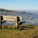 The bench on Rodborough common by Jeff  Wilson