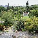 Botanic Garden Dunedin by DebbyScott