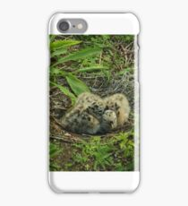 newly hatched iPhone Case/Skin
