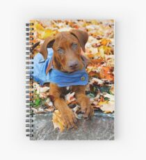 Duke in Denim. Spiral Notebook
