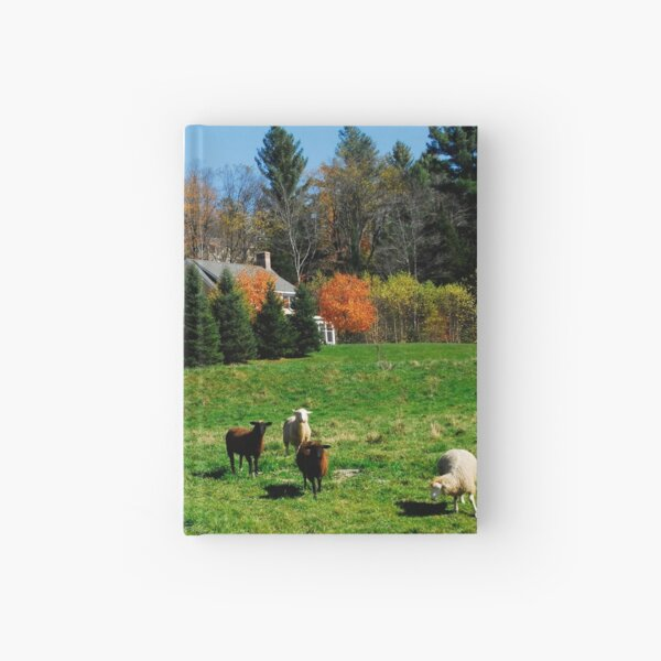 Sheep Farm in the Vermont Countryside Hardcover Journal