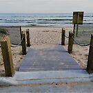 Walk Way to Lake Michigan by Graphxpro