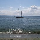 Let's Go Sailing  by WaleskaL