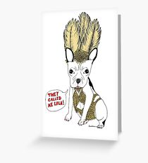 her name was Lola, she was a showdog Greeting Card