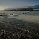 Frosty morning in the Chilterns by David Howlett