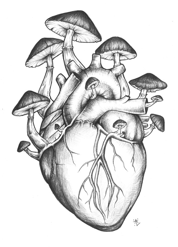 gnome mushroom art