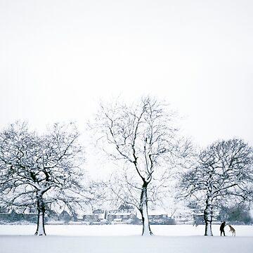 Snow Dog by Kilbracken