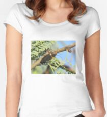 Metalic Wood-boring Beetle Women's Fitted Scoop T-Shirt