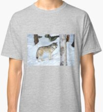 I'm eyeing a possible lunch_Timber Wolf Classic T-Shirt