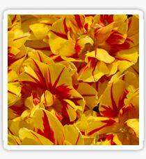 Red striped Yellow Tulip Sticker