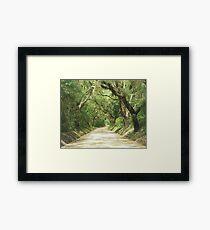 Edisto Lane Framed Print