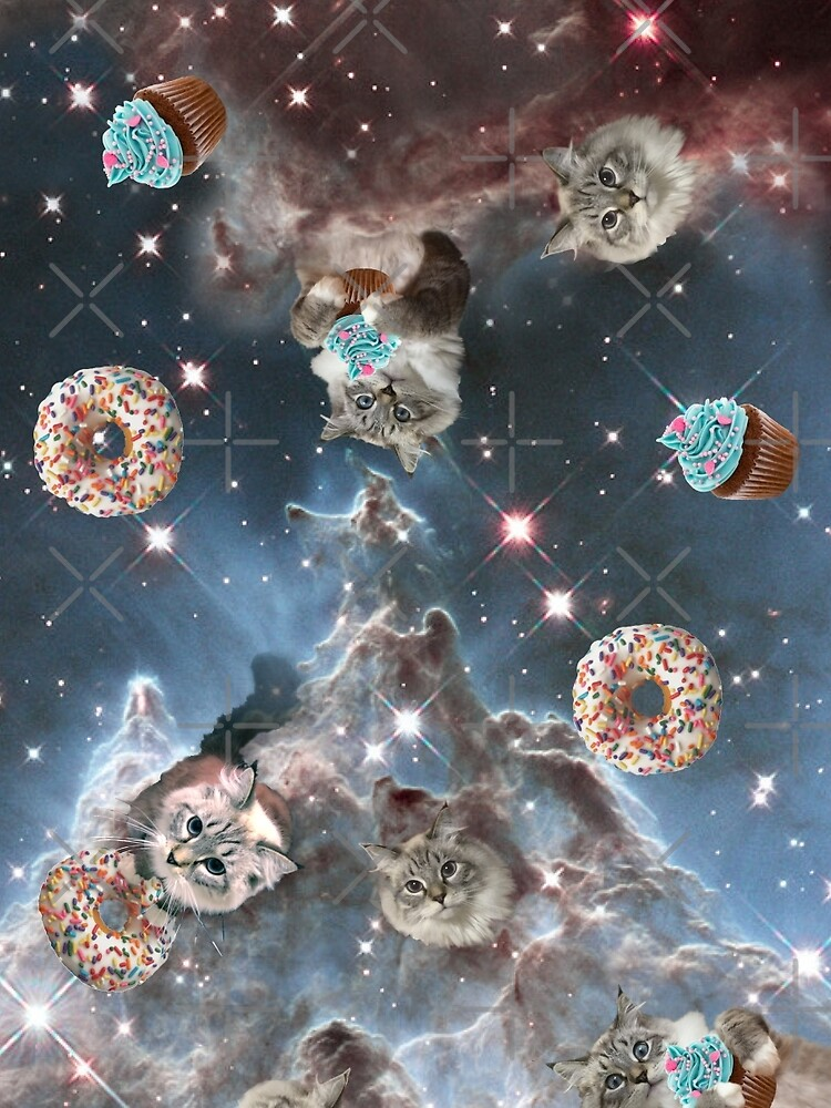 Cupcake Donut Space Cat by heARTcart