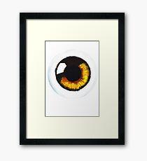 Orange Eye Framed Print