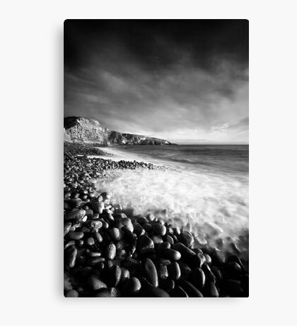 Spring Swell (Mono) Canvas Print
