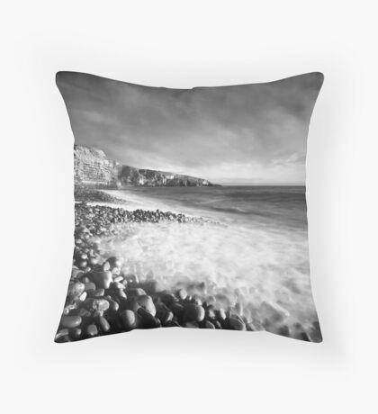 Spring Swell (Mono) Coussin