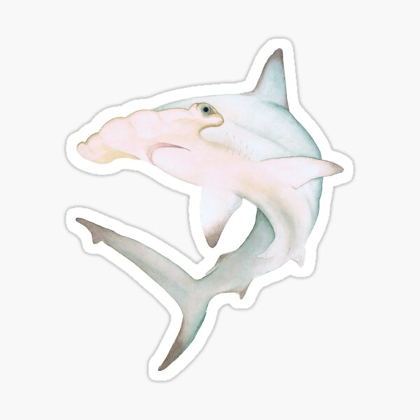 Pastel Watercolor Hammerhead Shark Sticker
