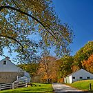 Valley Forge Farm by cclaude