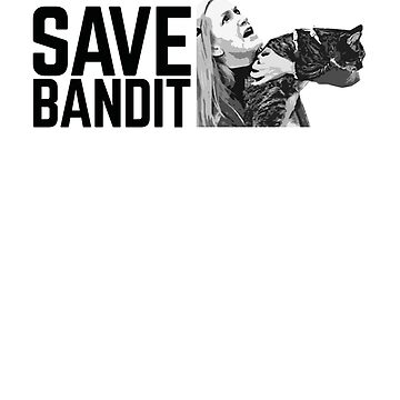 SAVE BANDIT - Angela's Cat Needs a Rescue by theofficememe