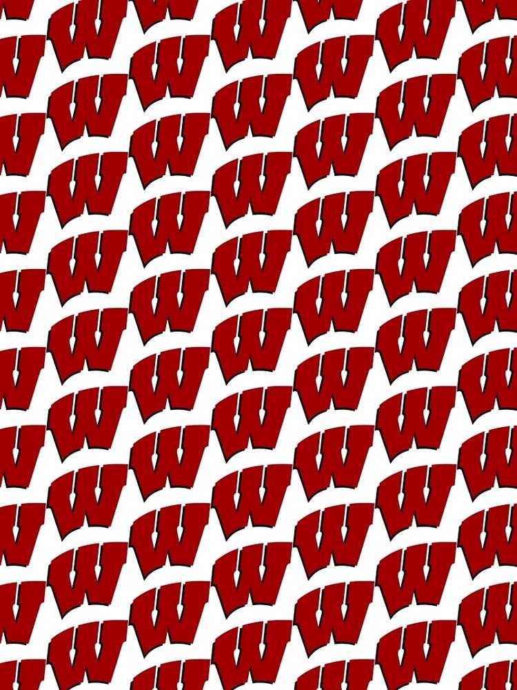 University of Wisconsin by GASSYCAKES