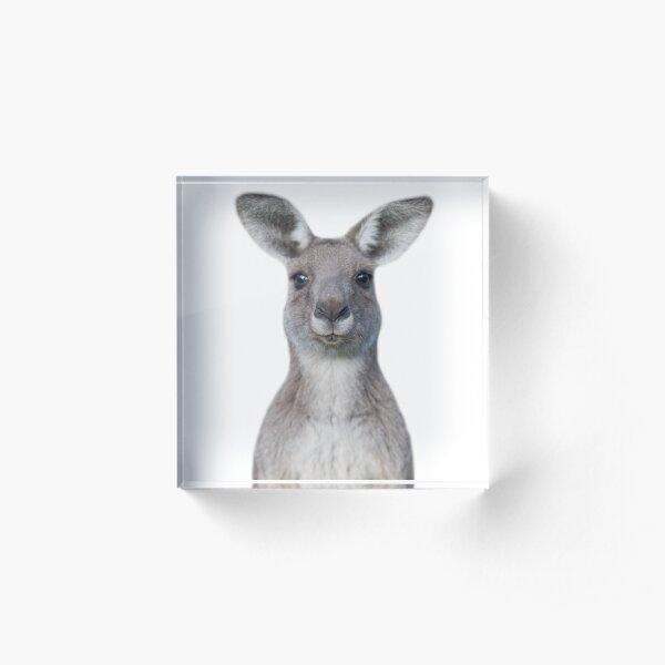 Cute baby kangaroo Acrylic Block