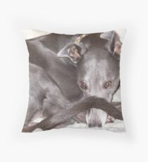 Greyhound Peek-a-Boo Throw Pillow
